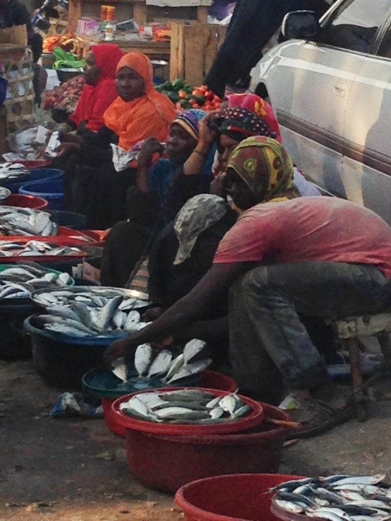 Tanzania-13629