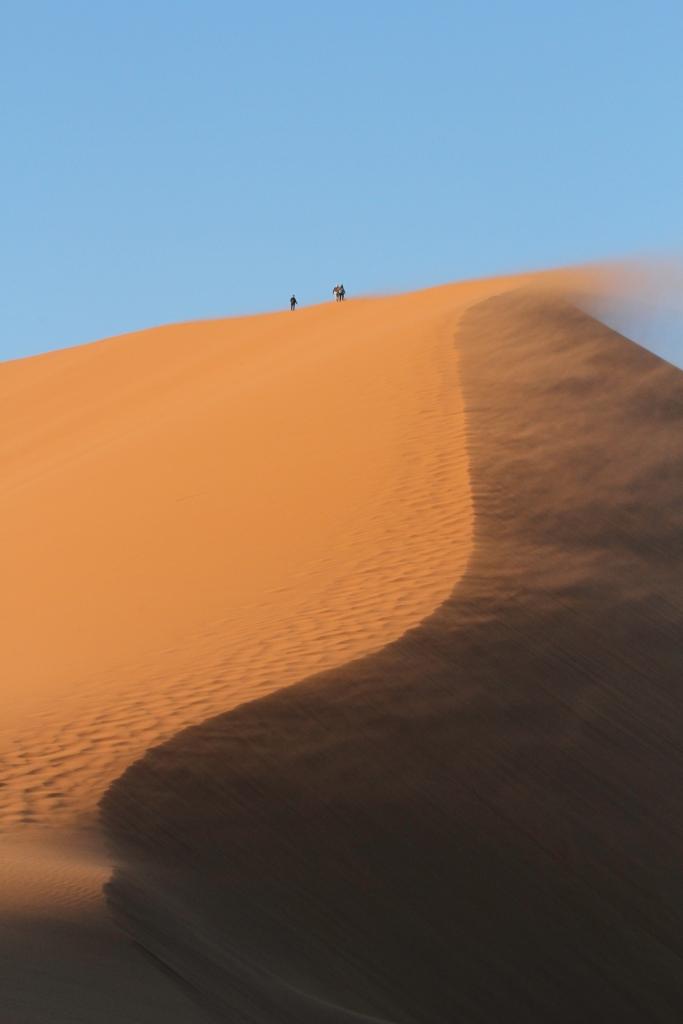 Dune45 blowing