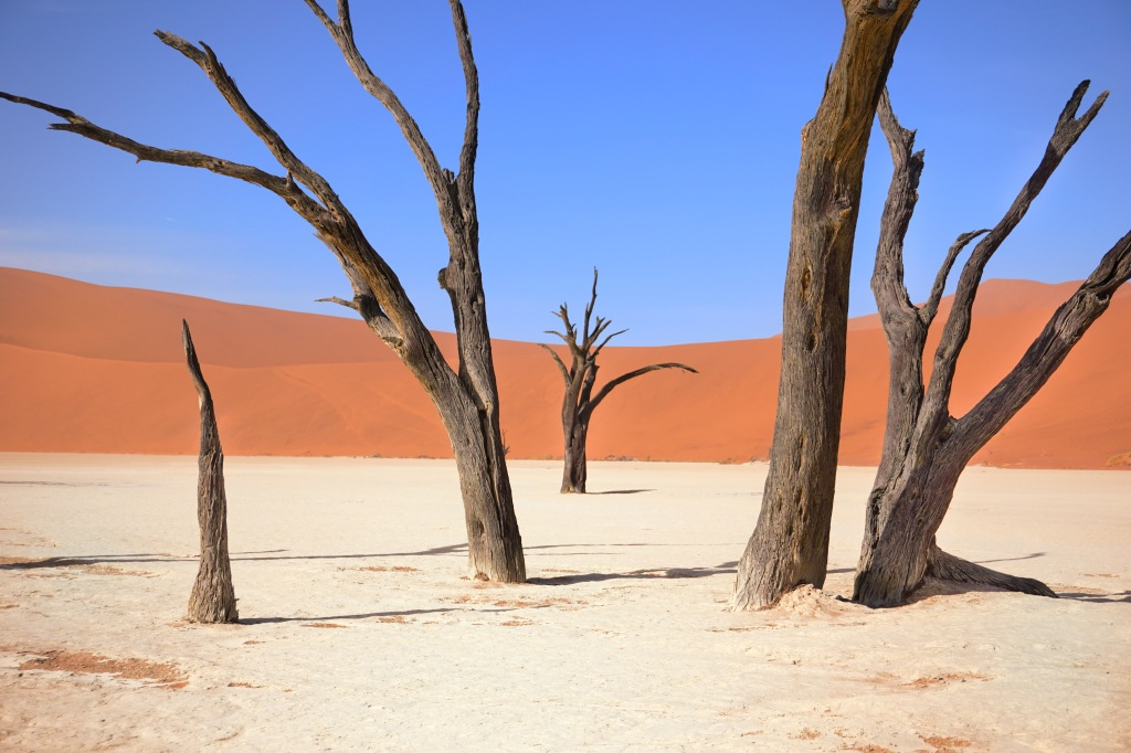 Deadvlei Colors