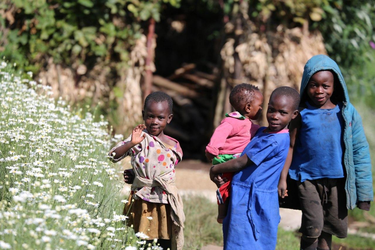 Rwanda Calling